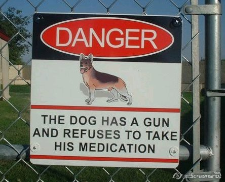 Dog Has Gun