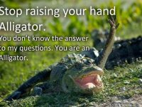 You Are An Alligator